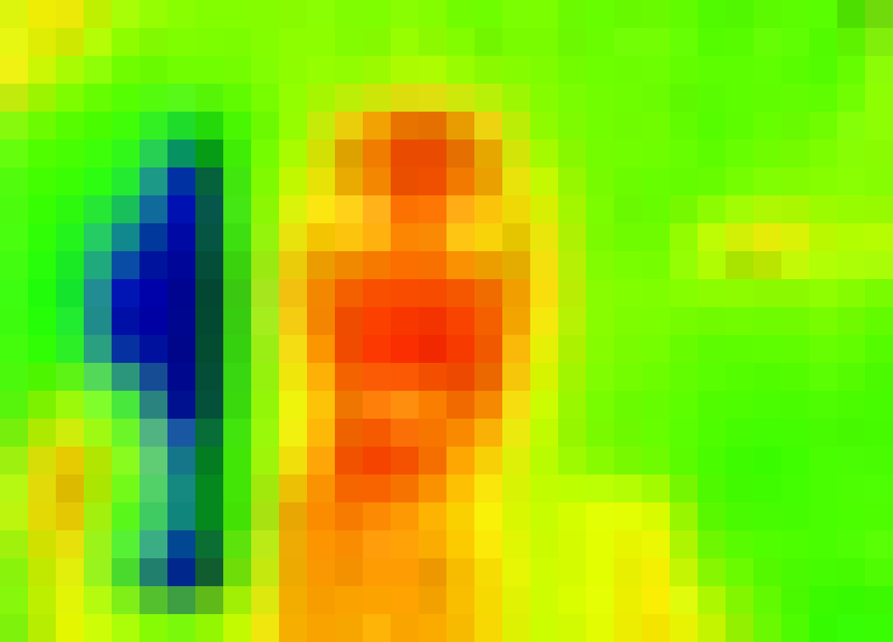thermal image of my face